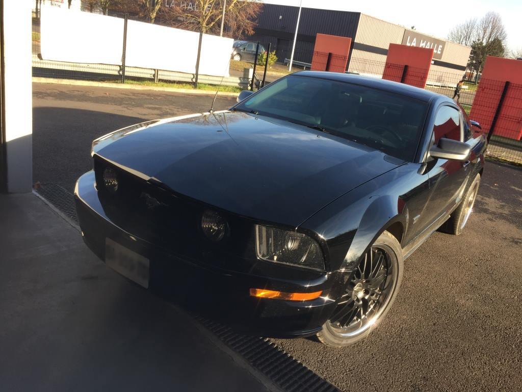 Belle Mustang en atelier !