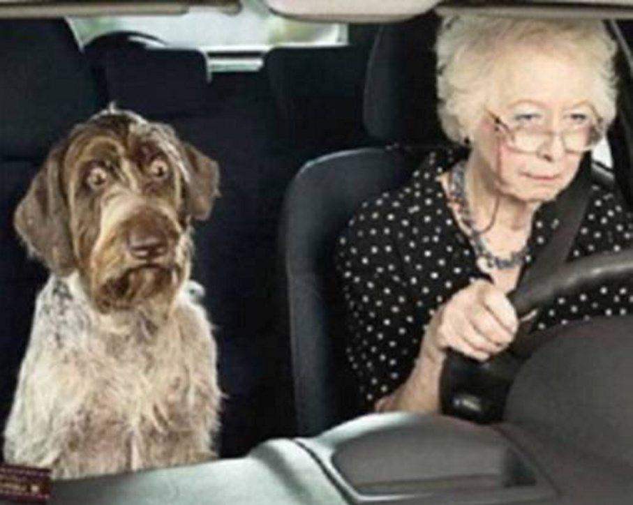 Permis de conduire : bientôt un contrôle médical pour les seniors ?