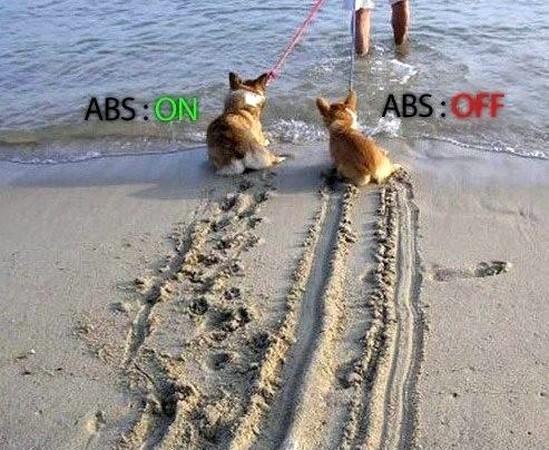 L'ABS électronique a 40 ans !